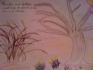drawing of daffodils and forsythia