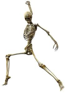 skeleton striding forward