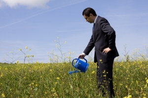 businessman with blue watering can in meadow