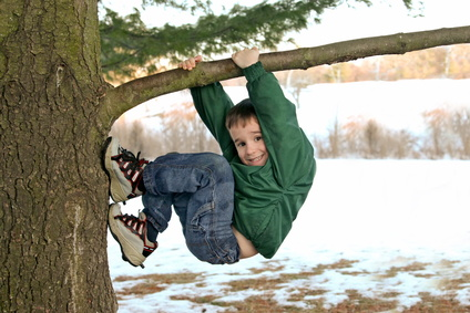 Kid Climbing Tree Boy Climbing Tree Jpg