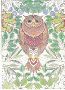 owl from secret garden