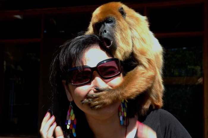 women monkey covering mouth