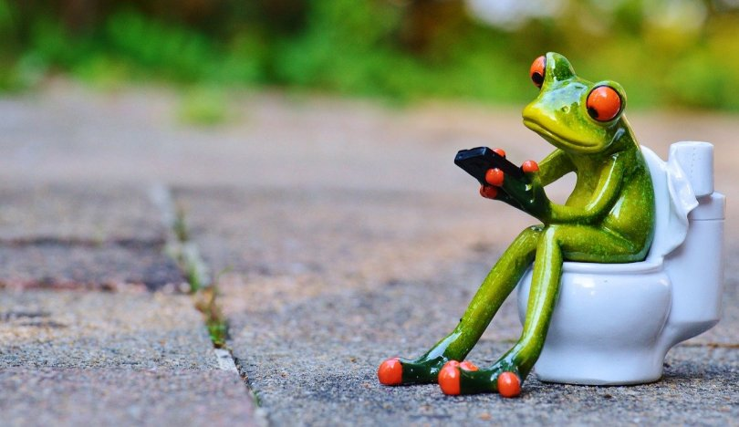 small green frog figure sitting on toilet figurine, holding a mobile phone-like device